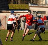 Cork v UCC, Waterford Crystal Cup
