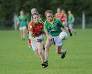 Leinster Minor B semi final Meath v Carlow
