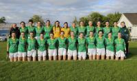 Meath minor team v Carlow Leinster B semi final