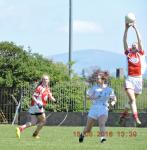 Louth high fielding v Kildare