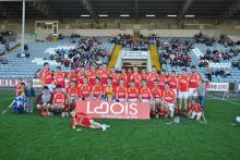 2013 Laois Minor Hurling Champions - The Harps Gaels