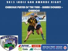 2013 Laois GAA Awards - Camogie - Niamh Dollard - Camross