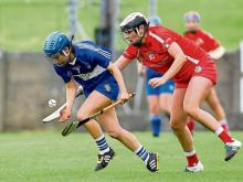 2016 Laois Camogie