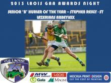 2013 Laois GAA Awards - Senior B Hurling - Stephen Reilly - St Lazerians Abbeyleix
