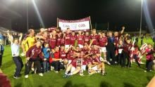 2013 Laois Junior Football Champions - Kilcavan