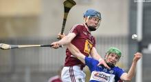 2014 Leinster Hurling Championship - Westmeath v Laois - Tommy Fitz