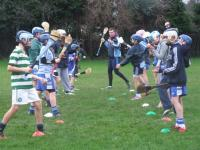 Hurling Lessons with Simon Lambert