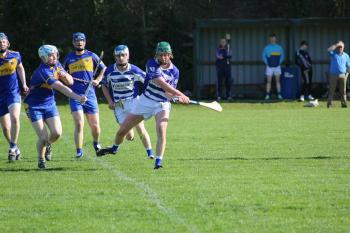Leinster SHL Div2 Naas v Carnew March 17