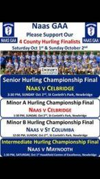 NAAS GAA HURLING FINALISTS