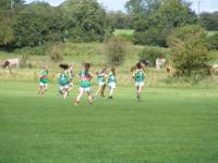 U-16 A Shield All Ireland Semi Final,  Mayo v Meath 2011._image38393