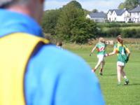U-16 A Shield All Ireland Semi Final,  Mayo v Meath 2011._image38481