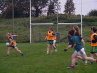 Kilmovee Shamrocks Training Session 2011._image40617
