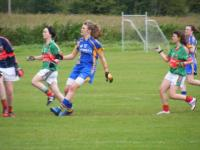 Minor B All Ire SF Wicklow v Mayo 16/7/2011._image36236