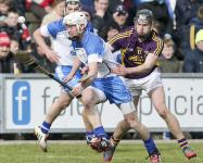 2015-03-22 National Hurling League Round 5 v Wexford in Wexford Park (Won)