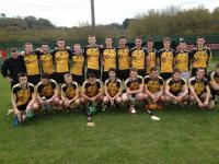 SCH winners St Brogans 2013/4