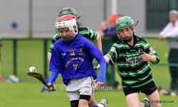U-12 Hurling League game V Douglas 2015