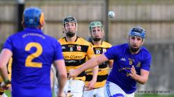 2016 S.H.L. against Na Piarsaigh
