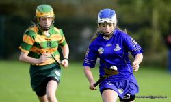 2017 U-13 Camogie Final v Blackrock