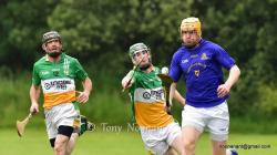 Senior Hurling League game V Bride Rovers 2015