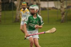 U14 Hurling Feile Qualifier