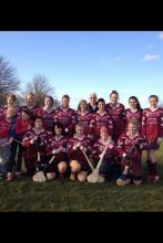 Adult Camogie 2013