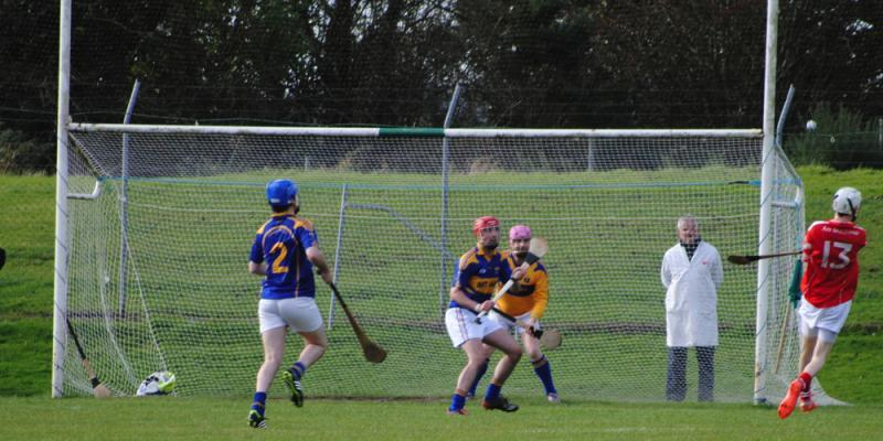 Mid-Cork Junior B Hurling Final 20th October 2012