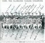 1966 Cork Team