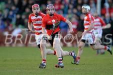 Fitzgibbon Cup 2014