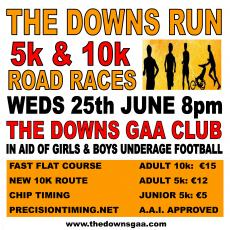 The Downs Run 2014