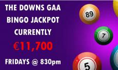 Bingo every Friday night - jackpot currently €11,700 !