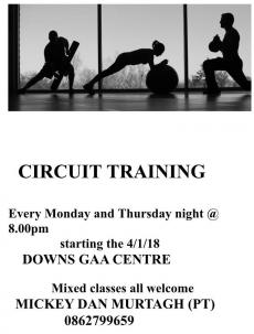 Circuit Training Classes with Mickey Dan