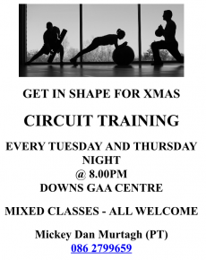 Mickey Dan's Circuit Training !!