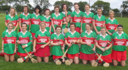 Camogie Team 2010