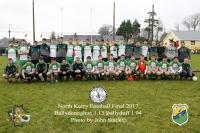 North Kerry Championship final 2017