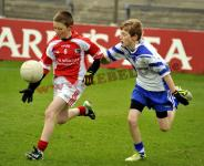 Daniel O'Donovan in Sciath na Scol Final Action