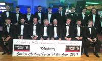 Hurling team of the year