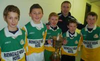 Newcastlewest Sarsfield Cup Players 2014