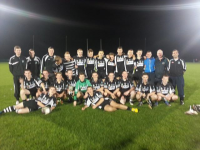 West Minor Hurling Champions 2013