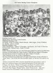 1933 Junior Hurling Co Champ's