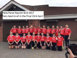 Camogie Feile Panel 2017 - Well done on reaching final- please support- O'Toole Park 12.00 on 23rd April
