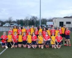 Shinty visitors 13th January 2018