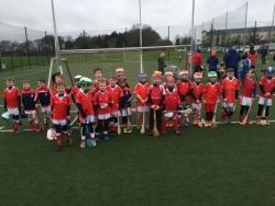U8 Hurling teams February 2017
