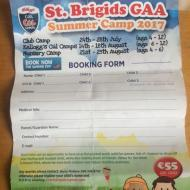 Summer Camps in St Brigids Information