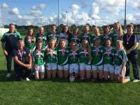 Limerick U 17 AllIreland plate winners 2017