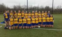 Clare U18 team 2018