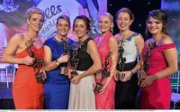 2015 Cork All Stars