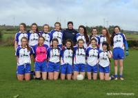 Waterford team photo from Under 16 Munster Championship game v Limerick