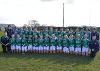 Limerick U16 Team that overcame Clare in the Munster Championship