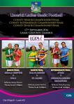 Limerick Adult Championship Finals