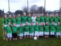 Limerick U14 that overcame Clare in the Munster Championship